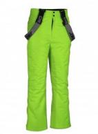 DIEL Eddy junior skibukser, grøn