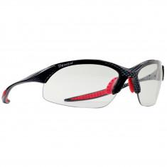Demon 832 Photochromatic, solbriller, carbon